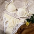 Female lingerie on bed in country style — Stock Photo #9242861