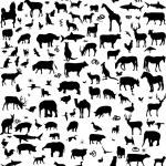 Mix animaux silhouette — Vecteur