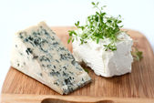 Blue cheese and feta — Stock Photo