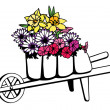 Wheelbarrow full of flowers — Stock Vector
