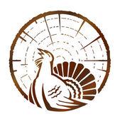 Wood grouse — Stock Vector