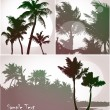 Royalty-Free Stock Vector Image: Palm trees, collection