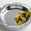 Two orchid flower on the silver tray — Stock Photo