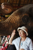 Thailand, Bangkok, The Rose Garden, a thai woman takes a picture close to an asian elephant — Stock Photo