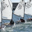 Young kids training in the port on optimist sailboats - Stock Photo