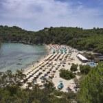 Italy, Elba Island, view of a beach near Porto Azzurro — Stock Photo #8735497