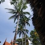 Thailand, Koh Samui (Samui Island), Thai resorts on the beach — Stock Photo #9282343