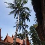 Thailand, Koh Samui (Samui Island), Thai resorts on the beach — Stock Photo #9282390