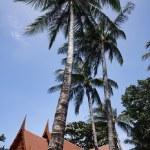 Thailand, Koh Samui (Samui Island), Thai resorts on the beach — Stock Photo #9282480