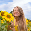 Stock Photo: Beautiful wombetween sunflowers