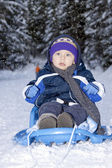 Baby in sled — Stock Photo