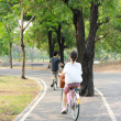 Stockfoto: Walk in park where womriding bicycle