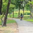 Walk in the park where a woman riding a bicycle — Stock Photo