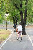 Paseo en el parque, donde una mujer en bicicleta — Foto de Stock