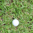 White Golf ball on green grass — Stock Photo