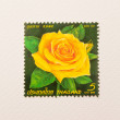 Stamp the yellow rose of Thailand — Stock Photo