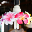 The lamp with flower decorations — Stock Photo