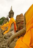 ват яй чай mong острые аюттхая исторический парк в таиланде — Стоковое фото
