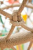 Grijze touwen samengebonden — Stockfoto