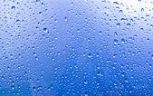 Condensación en el cristal — Foto de Stock