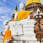 Ancient image buddha statue in Ayutthaya Thailand — Stock Photo #8266453