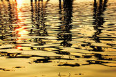 Its impact on the gold surface of the water — Photo