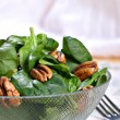 Spinach Salad Bowl with Nuts — Photo #8137062