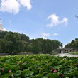 Beautiful Scene of Beijing Imperial Park: Beihai — Stock Photo