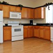 Newly finished kitchen — Stock Photo #8138447