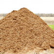 Stock Photo: Pile of natural mulch