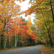 Autumn Scenic Road — Stock Photo