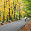 Colorful Autumn Scenic Road — Stock Photo