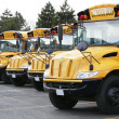 Stock Photo: Line of yellow school buses