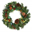 Christmas Wreath Isolated — Stock Photo #8138983