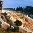 Yellowstone National Park, Mammoth Hot Sping - Foto Stock