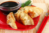 Closeup of Juicy Chinese Fried Potstickers — Stock Photo