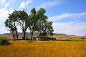 Opuštěné bardyard v Montaně pod modrou oblohou — Stock fotografie