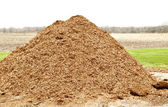 Pile of natural mulch — Stock Photo