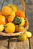 Bucket of gourds — Stock Photo