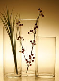 Glassware still life — Stock Photo