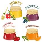 mermelada y miel aislado sobre fondo blanco — Vector de stock