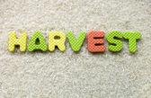 Harvest sign — Stock Photo