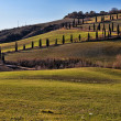Tuscany Val d'Orcia Road of cypress — Foto de Stock