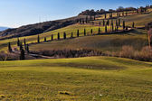 Tuscany Val d'Orcia Road of cypress — Stock fotografie