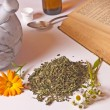 Mortar with herbs - Stock Photo