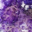Stock Photo: Amethyst