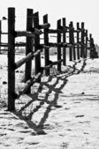 冬の牧歌 — ストック写真