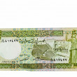Currency of Syria 5 Pound - Zdjęcie stockowe