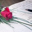 Stock Photo: Lovely red rose and pen