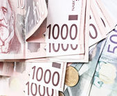 Serbian Dinar — Stock Photo